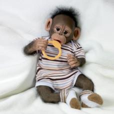 Ashton Drake- Baby Zeke